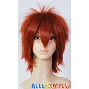 Katekyo Hitman Reborn Cosplay Tsunayoshi Sawada Red Brown Wig