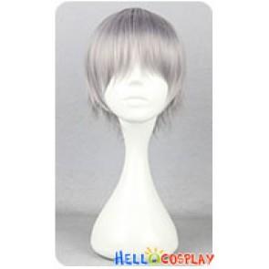 Katekyo Hitman Reborn Hayato Gokudera Cosplay Wig Gray
