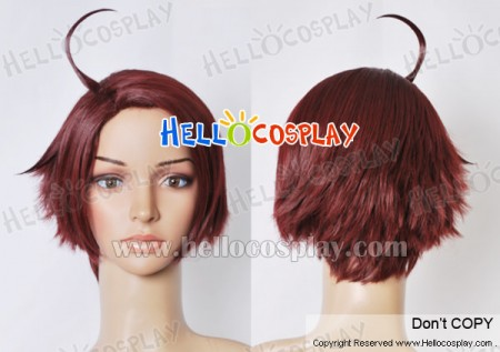 Axis Powers Hetalia APH Austria Cosplay Wig
