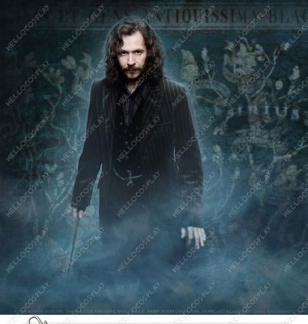 Harry Potter Cosplay Padfoot Sirius Black Magic Wand With Light