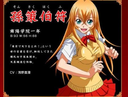 Battle Vixens Cosplay Hakufu Sonsaku Costume